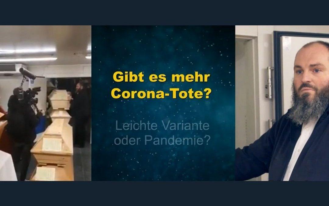 Manipulation im TV Bestatter: Falsche Corona Tote + die TV Ausstrahlung zum Interview